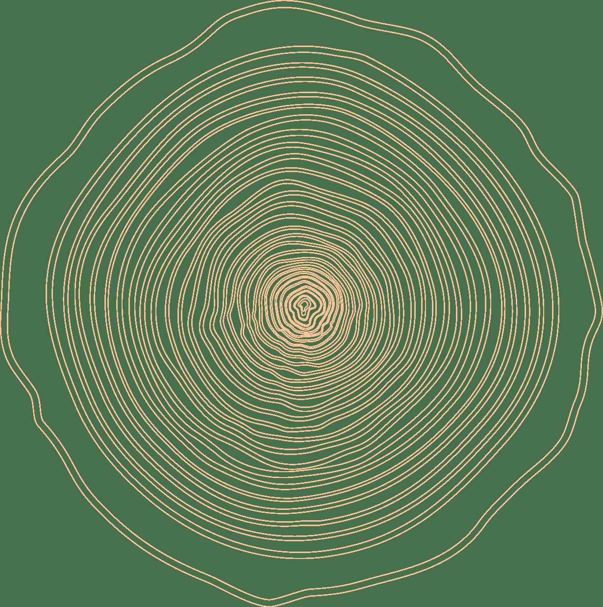 empreinte de bois, Ébénisterie d'Alain